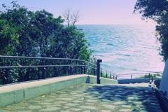 海が見える坂は初夏の装い