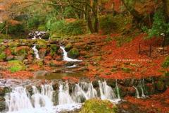 落葉の貴船川