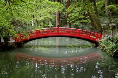 a symmetry of the bridge - IMGP2571