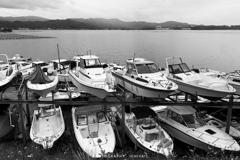 ボート品評会