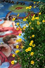 angelo del fiore - DSC09988