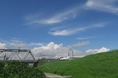 青い空と白い車両