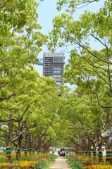 並木の向こう側 - DSC09946