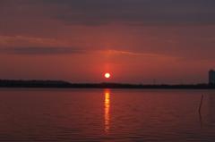 初日の出(紅) - DSC08557