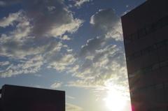 屋上からの夕日 - IMGP3020