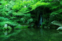 緑と水の音