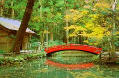 紅橋 - IMGP0805