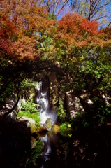 紅葉と小滝 - IMGP2133