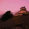 暮れる掛川城