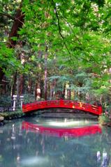 深緑と紅橋 - IMGP0578