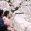 桜香る門出