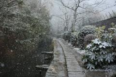 雪の哲学の道