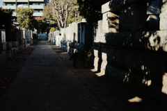 猫撮り散歩2346