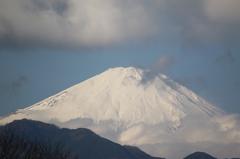 大井松田から望む富士
