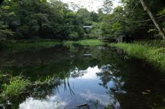 雲場池(2)