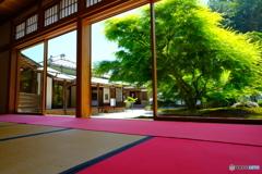 長寿寺庭園
