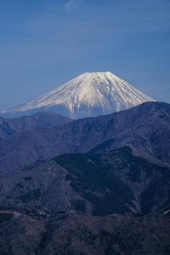身延からの富士