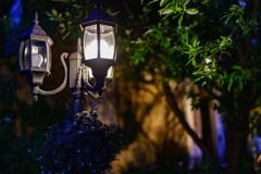 Dreamton~residence~