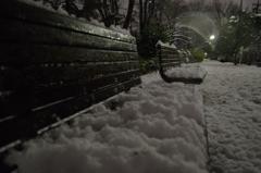 本日の大雪その3