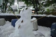 本日の大雪その1