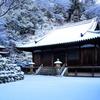 白い雪、青い雪