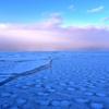 夕暮れ時の流氷