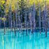 五年前の青い池