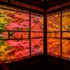 思い出の紅葉: 二年前の瑠璃光院