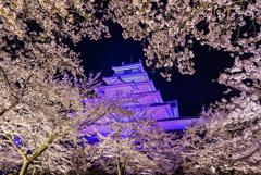 ギザギザハートの桜窓