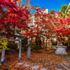 四柱神社の紅葉