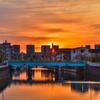 呑川と朝日
