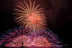 思い出の花火: 十年前のサマーナイト・ファイヤー・フェスティバル