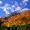秋と冬の競演