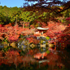醍醐寺 弁天堂の紅葉