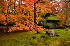 しょうざん庭園の紅葉