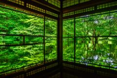 瑠璃光院の新緑リフレクション2