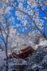 愛宕念仏寺雪景色(再編集版)
