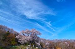 古殿の春 ~美しき空の下~