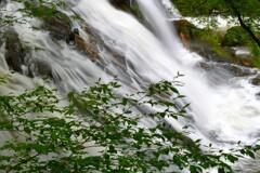 緑彩二見ヶ瀑