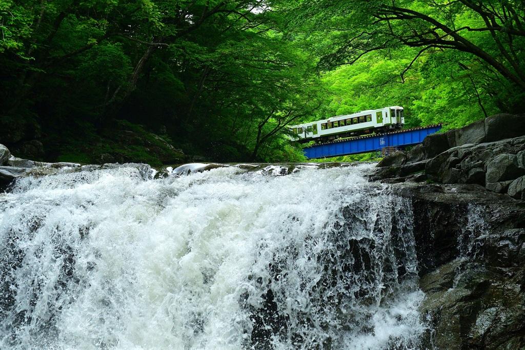 夏井大滝 ~ 緑渓を駆け抜ける ~
