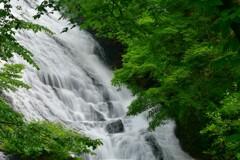 緑彩湯滝 4