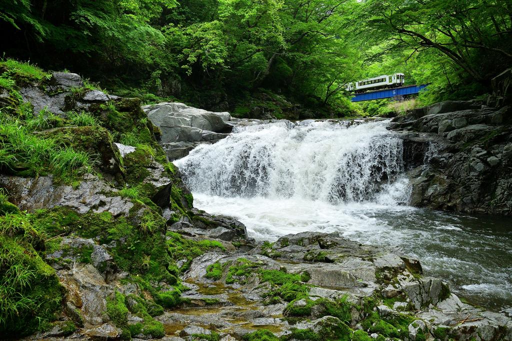 夏井大滝  ~ 緑渓を駆け抜けて ~