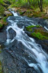 春の滝川 ~癒しの渓流瀑~