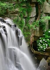 緑彩八流瀑