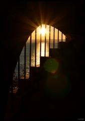 希望への階段