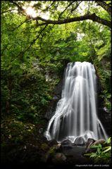 小野川不動滝 ~ 緑景の輝きと絹糸の流れ~