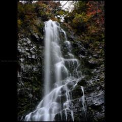岩壁の彩 五 ~滝上部~