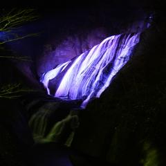 袋田の滝 ライトアップ1 ~パープル~