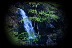 花滝 ~新緑の風~