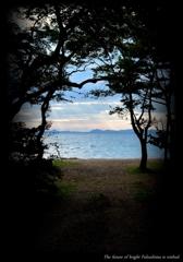 猪苗代湖の夏 一 ~浜辺の入り口~